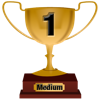 Number 1 Award for Medium Level
