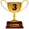 Number 3 Award for Medium Level